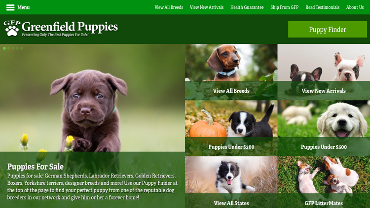 Green Field Puppies.