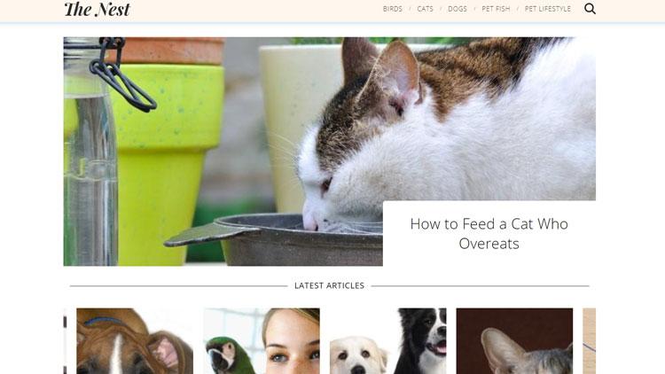 pets.thenest.com